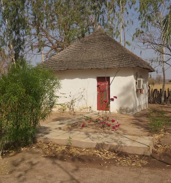 Les cases du campement de chasse Ndomboto